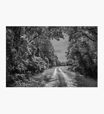 On A Country Road: IR Photographic Print