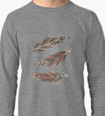 Watercolor Graphic Kestrel Feathers Lightweight Sweatshirt