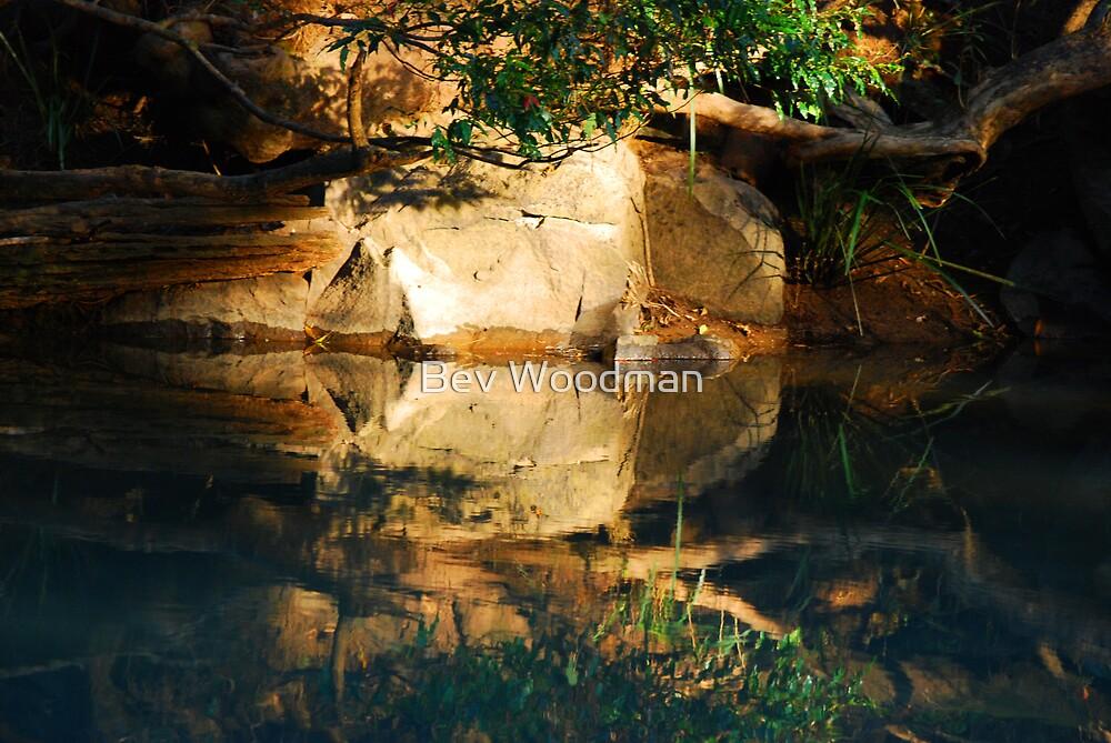 Mirror Image - Dingo Creek NSW by Bev Woodman