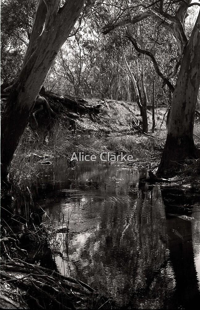 Untitled by Alice Clarke
