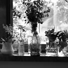 HERBS ON THE WINDOW SILL by Sharon A. Henson