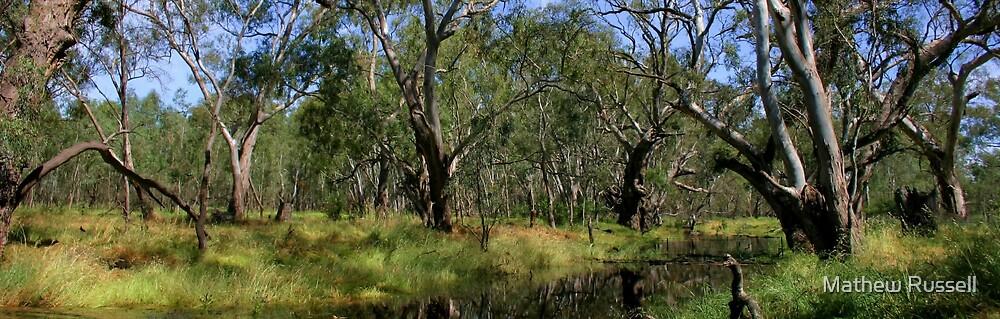 Creek by Mathew Russell