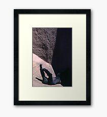 Orangutang, Melbourne Zoo Framed Print