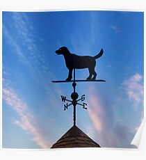 Barking at the Wind Poster