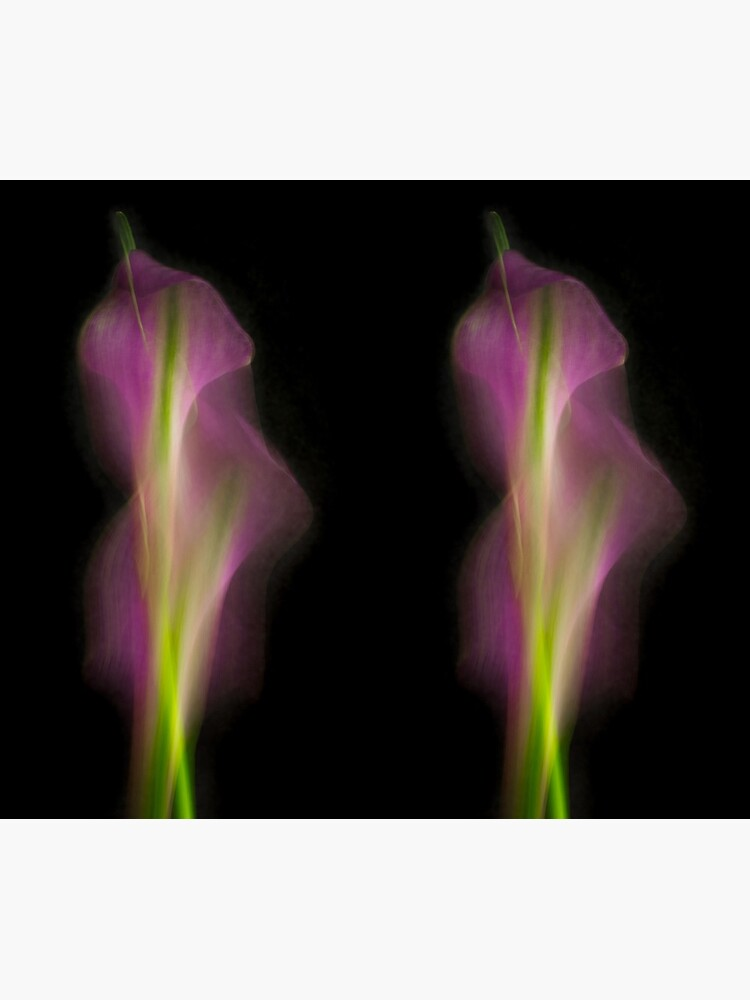 Abstract Purple Calla Lily on Black Background by AhUmDesign