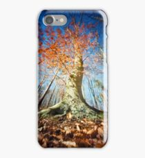 Beech iPhone Case/Skin