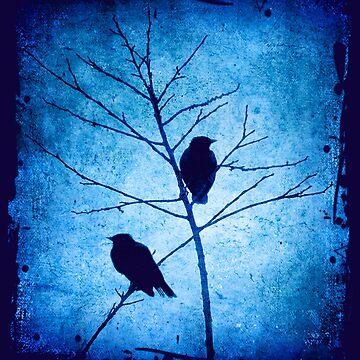 blue dusk by scottimages