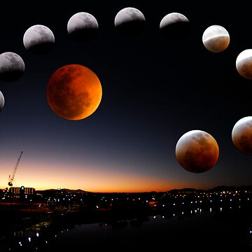 Dark Side of the Moon by gardenofbeeden