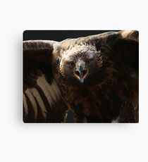 Just try me Canvas Print