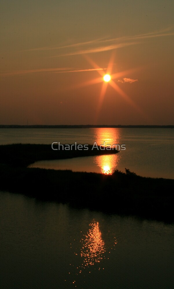 Sun Trails by Charles Adams