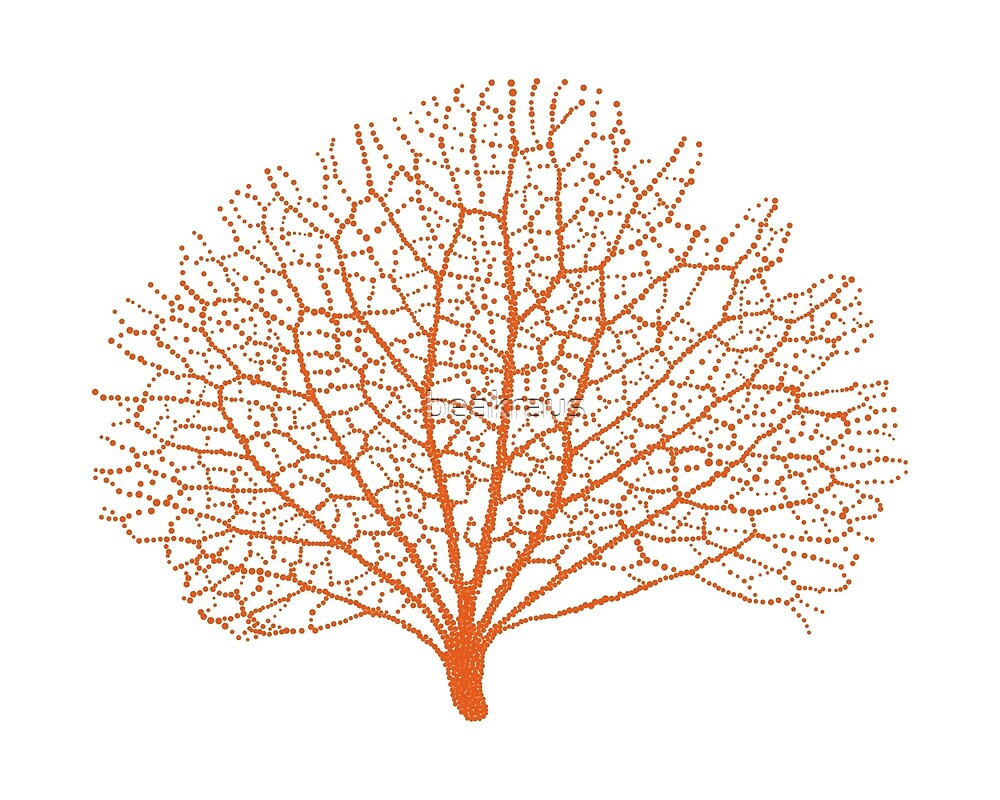 """red sea fan coral silhouette"" by beakraus 