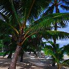 Rarotonga Cook Islands by Toni McPherson