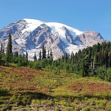 Mt. Rainier: Alpine Meadow by woodeye518