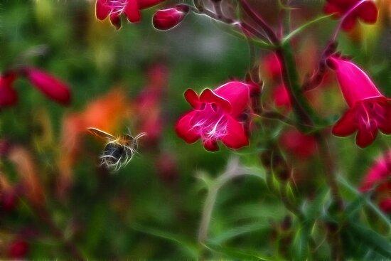 Penstemon and Bee in Flight - Fractalius by grezmel