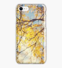 Gold Leaves and Blue Sky iPhone Case/Skin