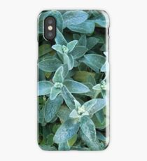 In Just a Shake of a Lamb's Ear  iPhone Case/Skin