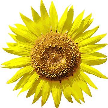 Sunflower blossom by SeijiArt