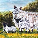 Black Faced Lambs by sharpie