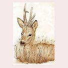 Roe Deer pencil sketch  by sharpie