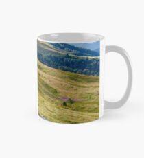 mountain landscape with stone and peak Mug