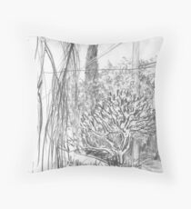From my Front Door in Frederick St Throw Pillow