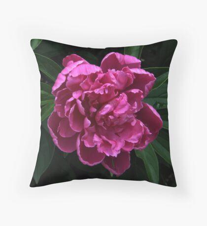 June Splendor Throw Pillow