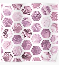 Rose hexagons Poster
