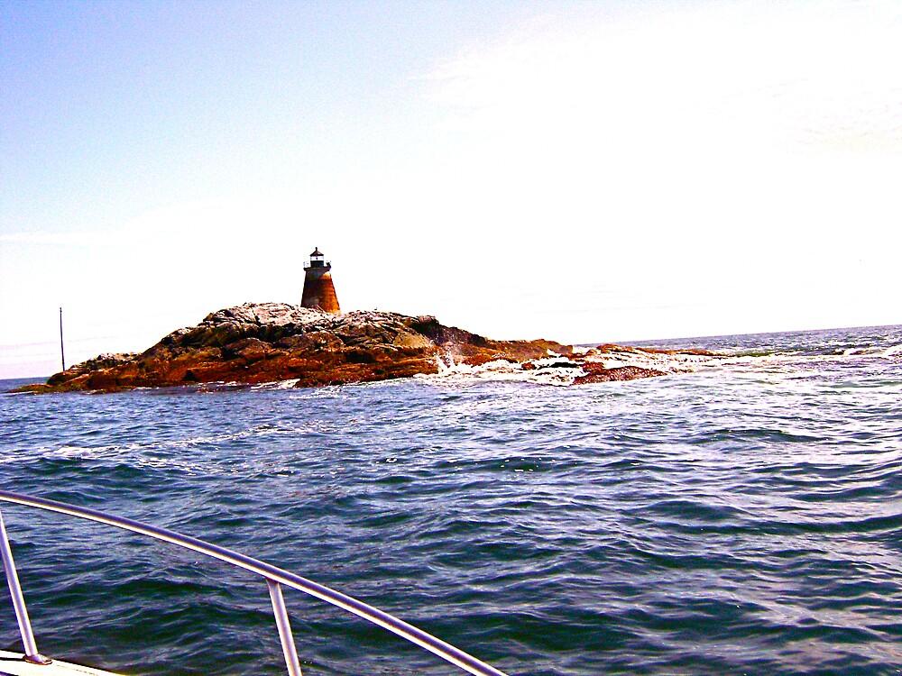saddleback lighthouse by kotab