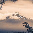 Fuji-San by humblebeeabroad