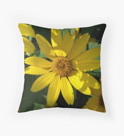 Yellow Daisies by the Roadside Throw Pillow
