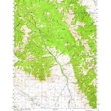 USGS TOPO Map Idaho ID Gilmore 239079 1957 62500 by wetdryvac
