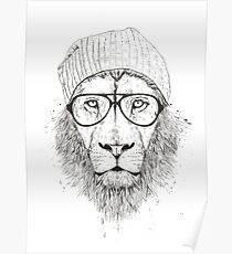 Cool lion (bw) Poster