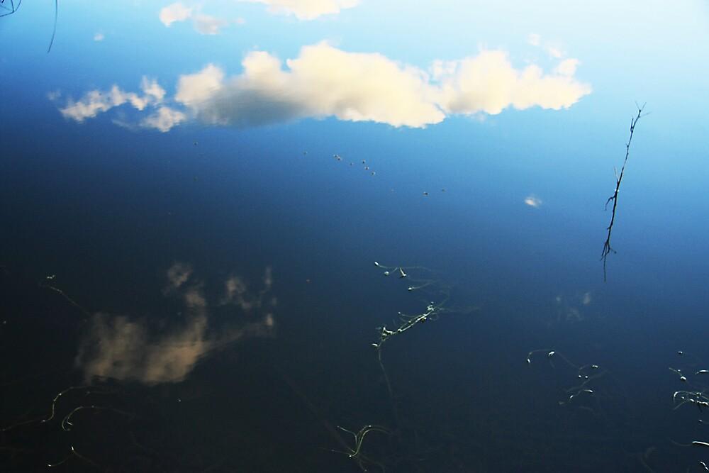 Sky Pond by Stephen Denham