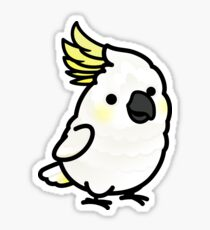 Chubby Sulphur-crested Cockatoo Sticker