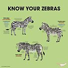 Know You Zebras by PepomintNarwhal