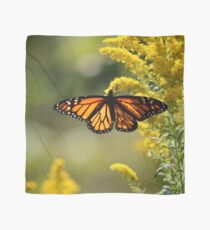 The Monarch and the Golden Rod Scarf