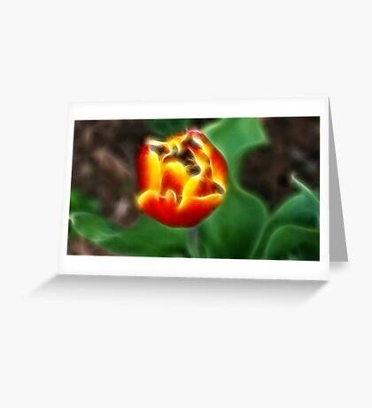 Flaming tulip 2 Greeting Card