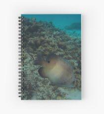Mauritius Fisch Unterwasser Spiral Notebook