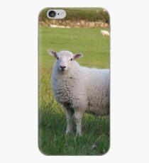Sheep of Llanfairfechan. iPhone Case
