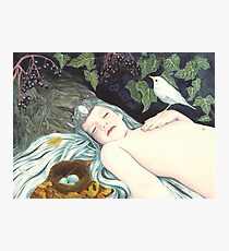 The Robin's Daughter Photographic Print