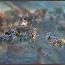 Red Deer Dreams at Dawn by Wayne King