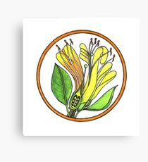 HONEYSUCKLE FLOWERS WITH CROSS SECTION Canvas Print