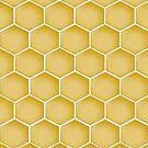 honeycomb by Sajeev C Pillai