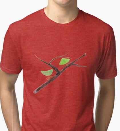 Weaver Ants going home Tri-blend T-Shirt