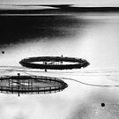 Skye - Gone Fishing by Kevin Skinner