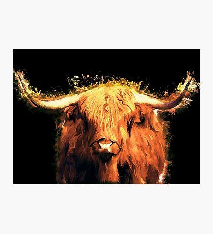 Cow art #cow #animals Photographic Print
