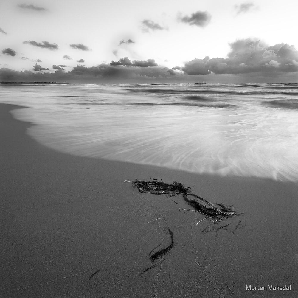 Flowing sea by Morten Vaksdal