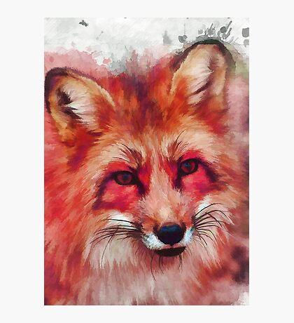 Red fox art #fox #animals Photographic Print