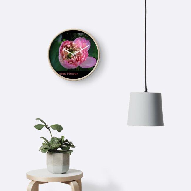 Emerging Lotus Flower by Keith Richardson