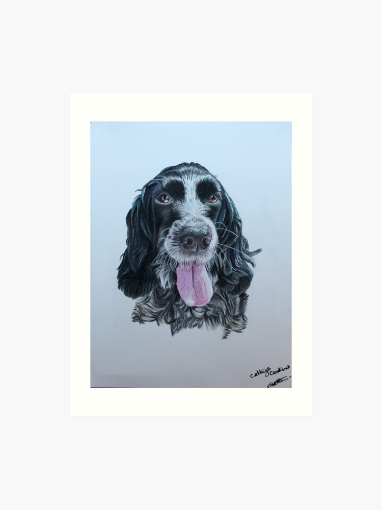 blue roan Cocker Spaniel | Art Print